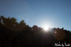 徳之島での眩しい太陽の光芒