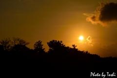徳之島の空が夕陽で真っ赤に染まるとき