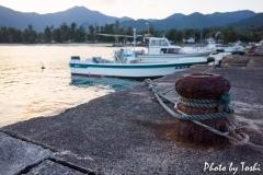 山漁港にて