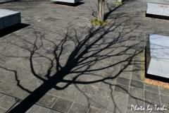 熊本のとある公園にて