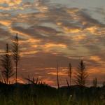 2月20日_美しい夕陽