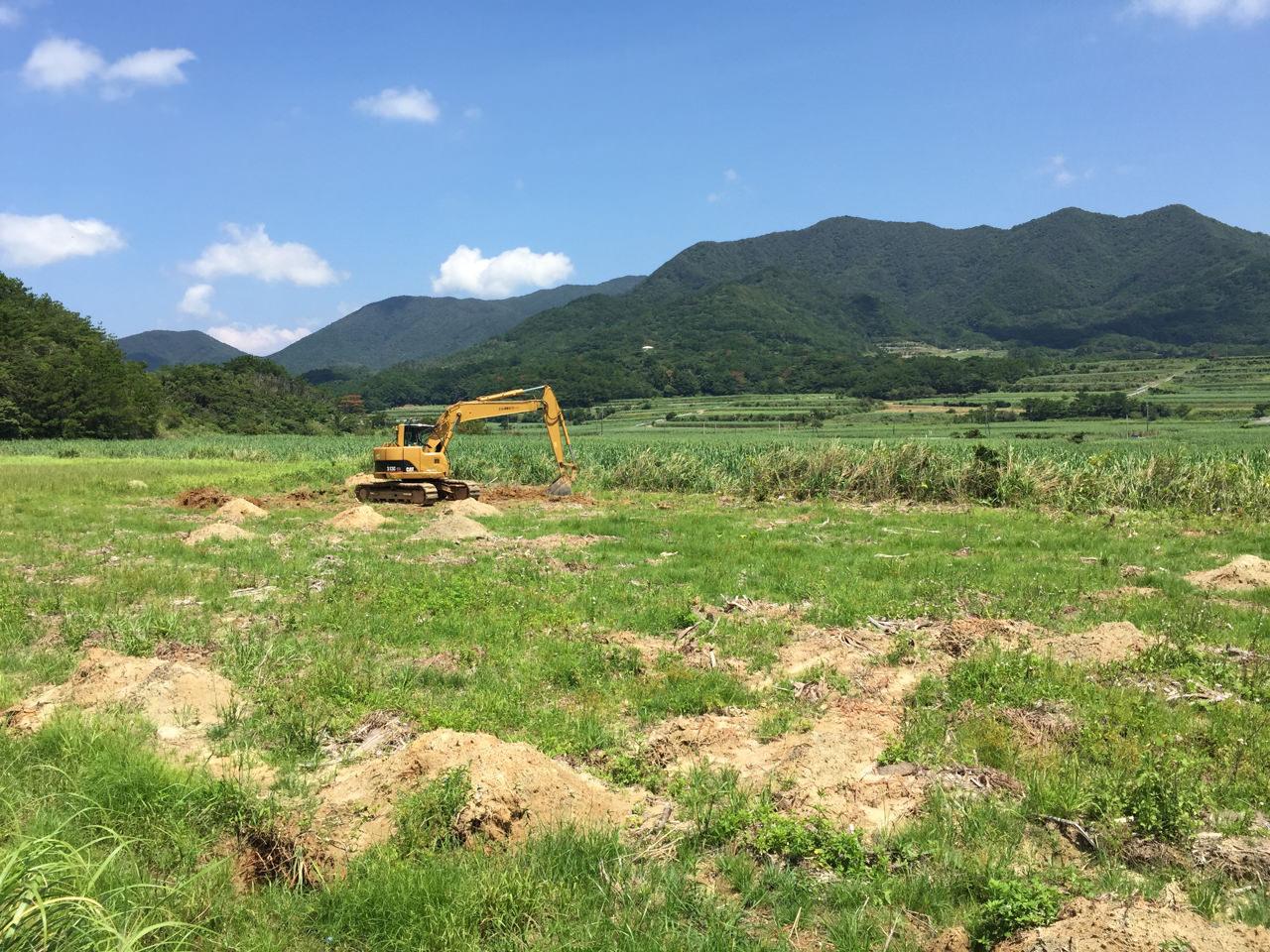 農園整備が始まりました! | 花徳マンゴー