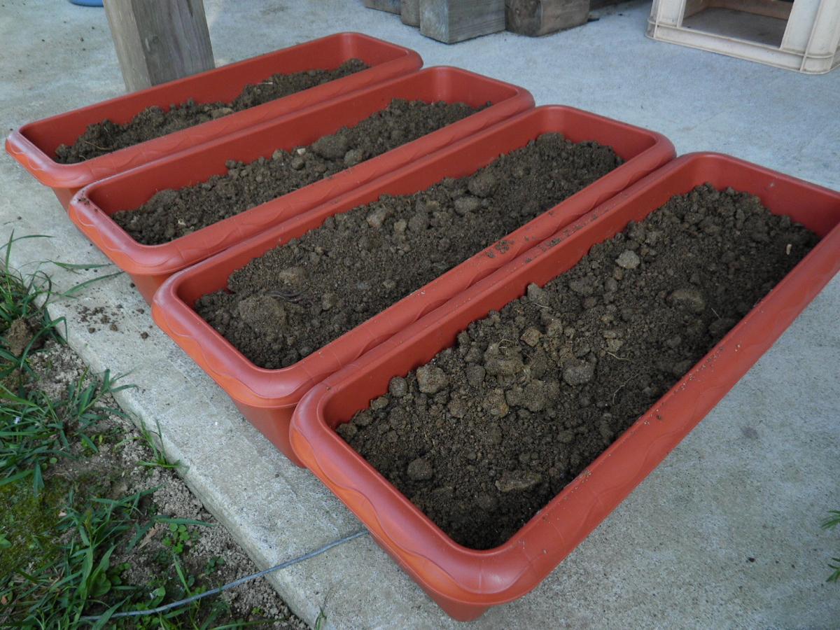 コスモス植付けに使用した土の写真
