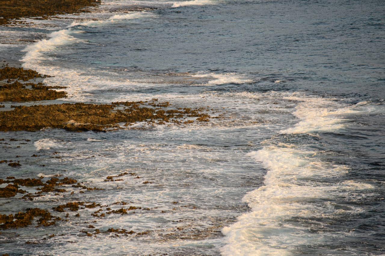 犬の門蓋の海岸線-1