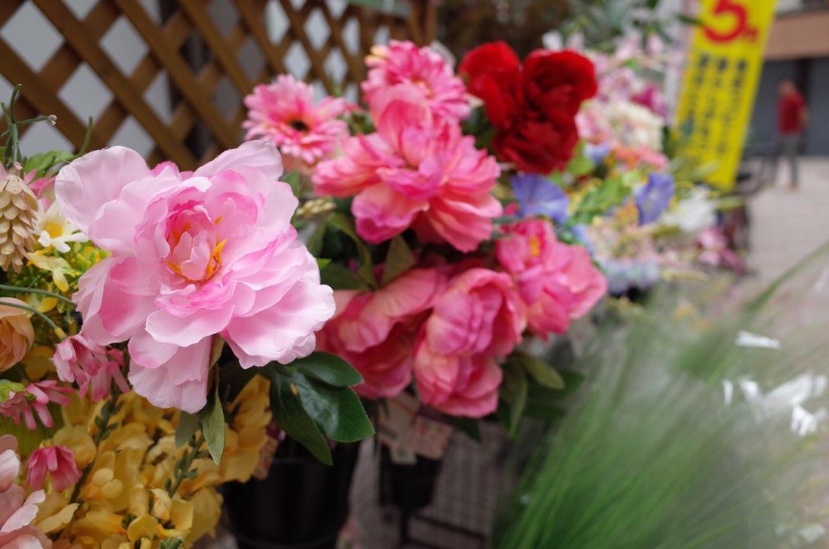 Ricoh GR2で撮影した造花