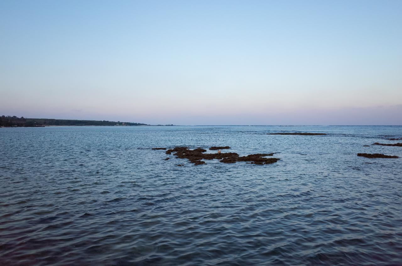 山漁港からの太平洋-1
