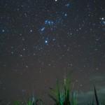 【星景写真】コンデジの「Ricoh GR2」で、さとうきびを絡めて星空を撮影したよ!