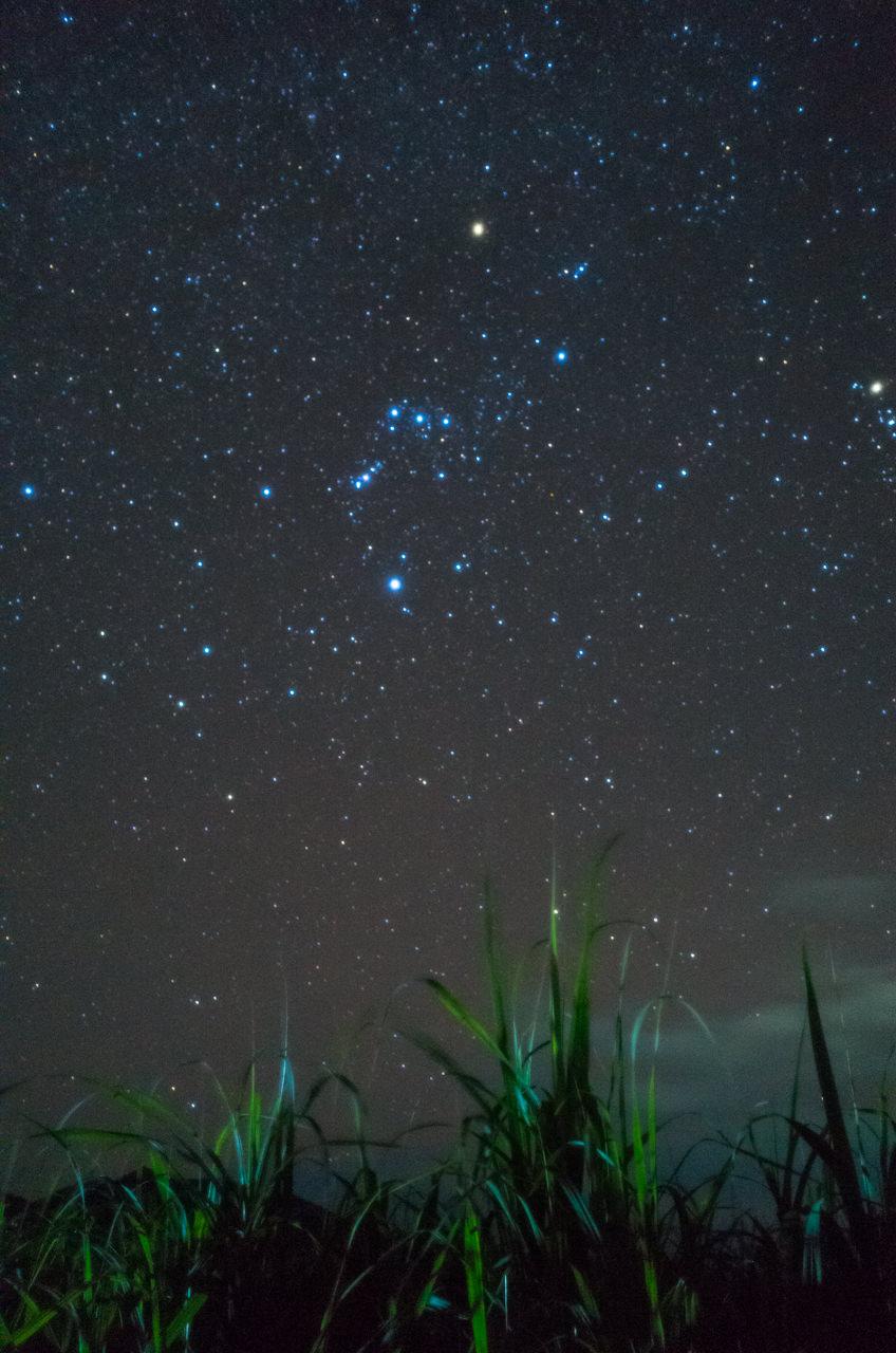 コンデジの「Ricoh GR2」で、さとうきびを絡めて星空を撮影したよ! | 花徳マンゴー