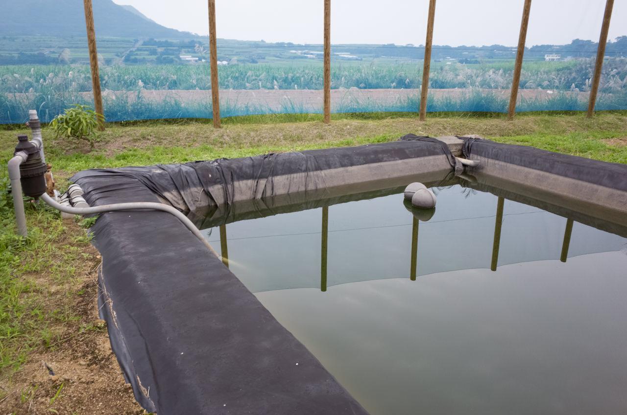 マンゴーへのかん水施設-貯水池