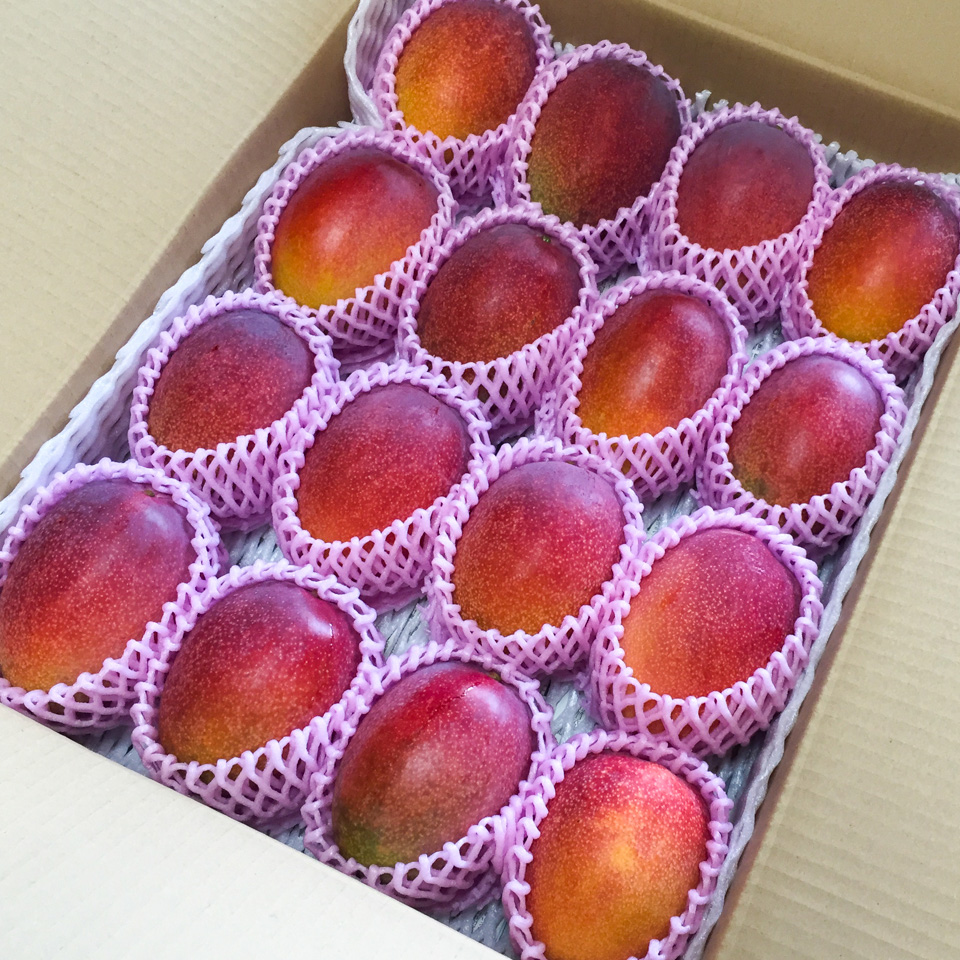 マンゴーの大箱