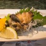 鹿児島で美味しい「お刺身」が食べたいときは、船頭料理「魚庄」がおススメです!