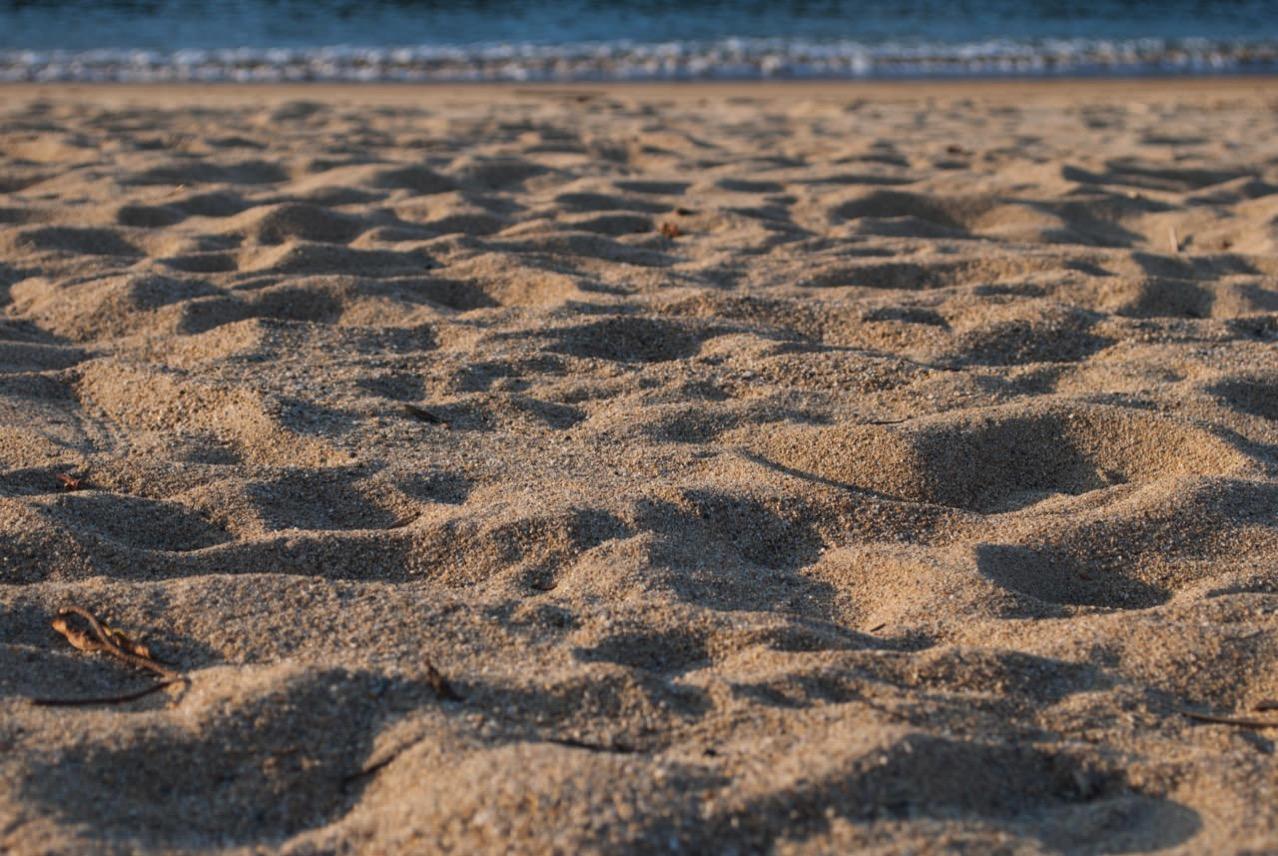 平土野漁港での砂浜