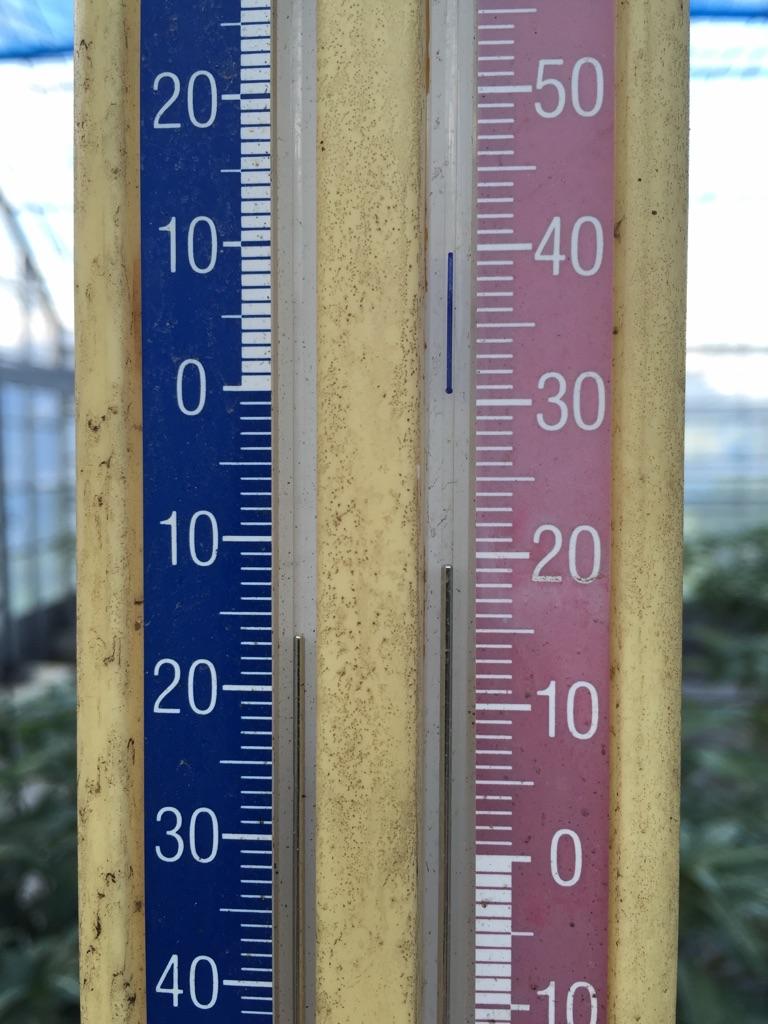 1月のビニールハウス内の温度計