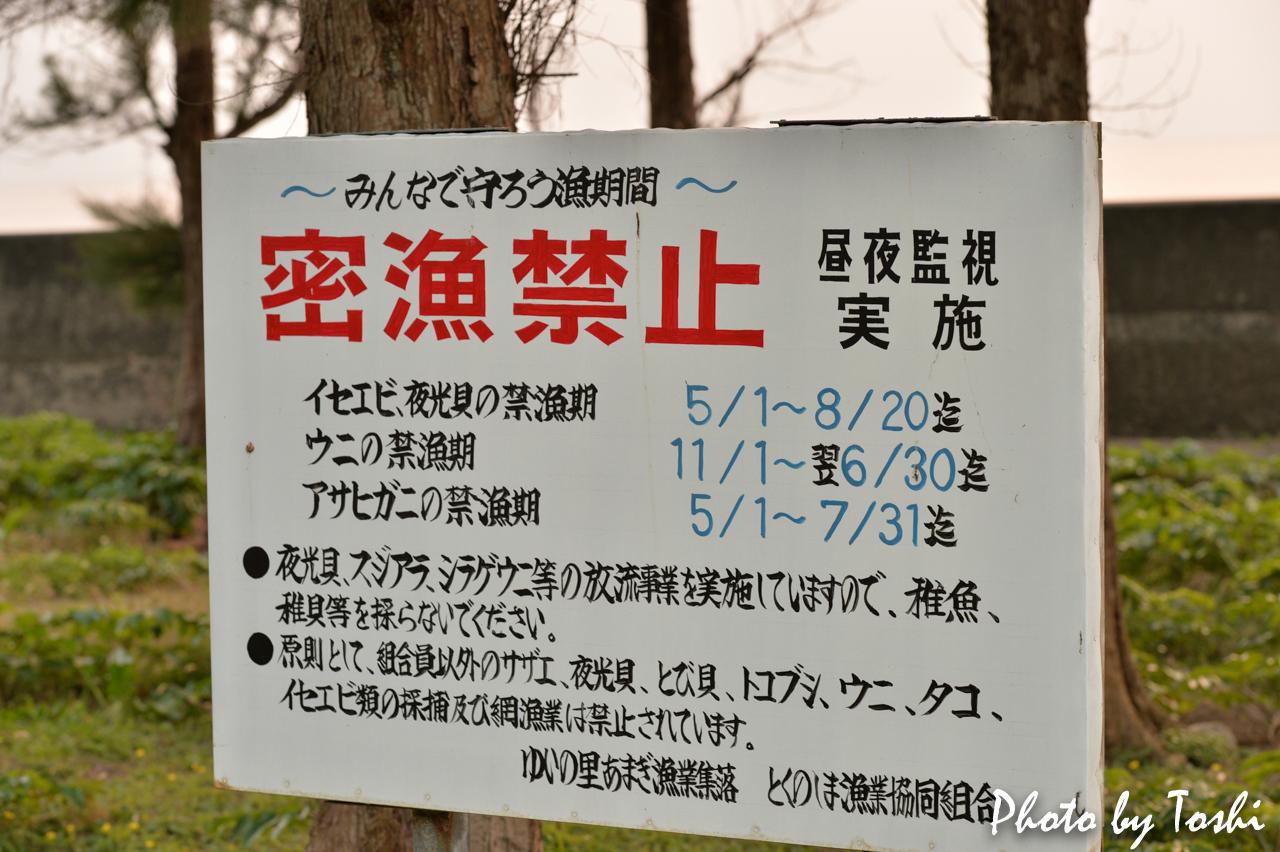 徳之島の禁漁期間
