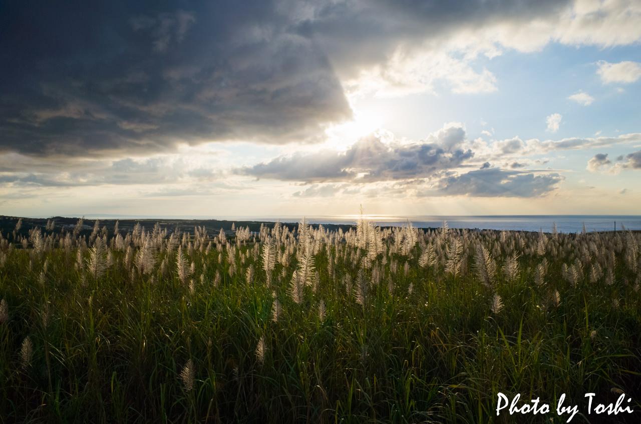 夕日写真-2