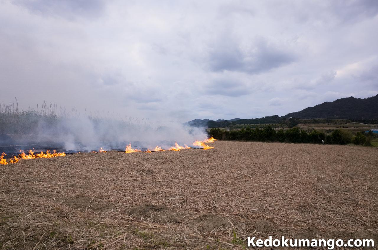ハーマ焼きの様子-1