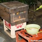 蜜蜂(みつばち)へ餌として砂糖水を与えたよ!