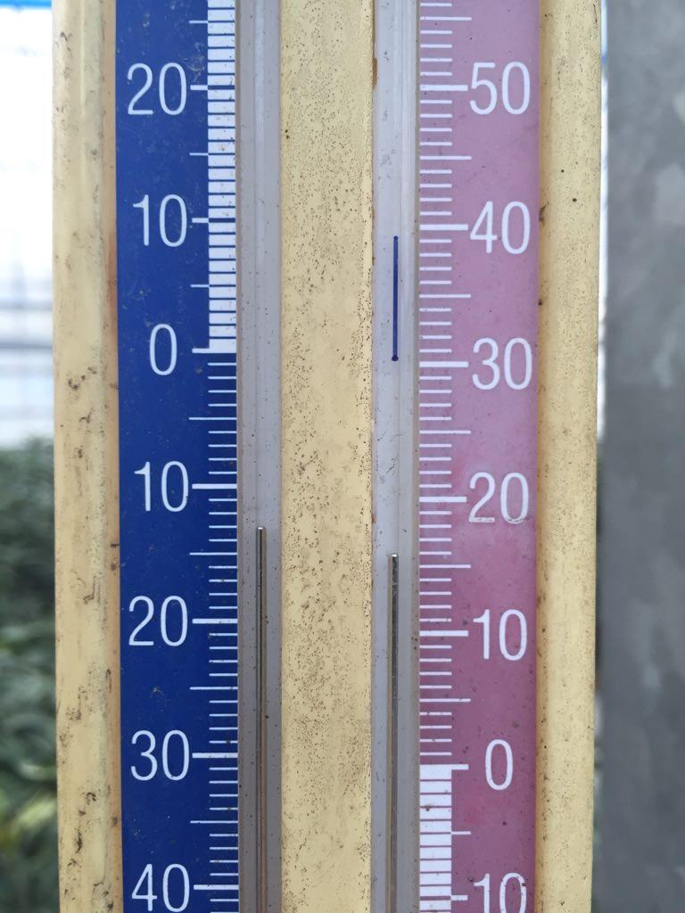 ビニールハウスを閉めた時の温度計の様子