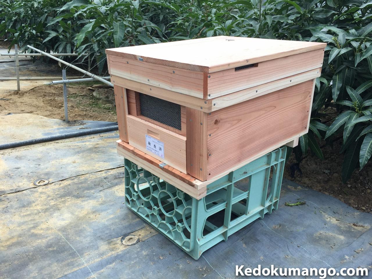 到着直後の蜜蜂の巣箱の様子
