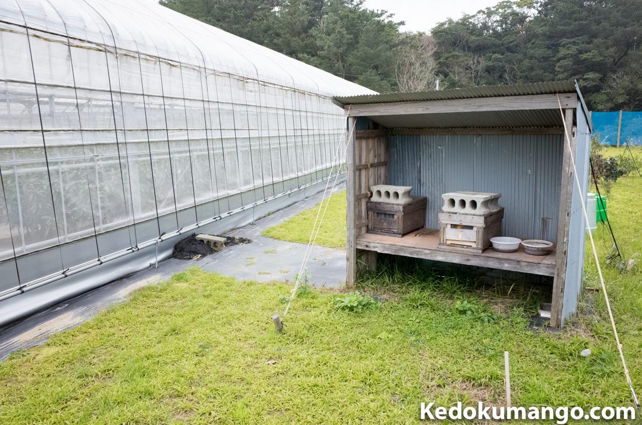 ミツバチの巣箱の設置の様子