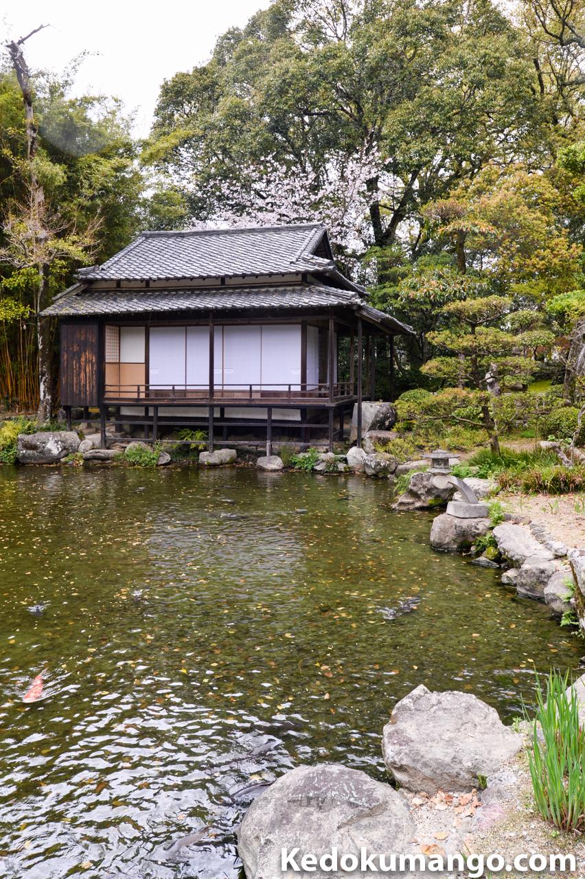 日本庭園の写真をトリミング処理したもの