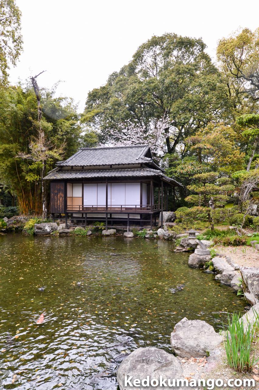 フォトツアー中に24mmで撮影した日本庭園