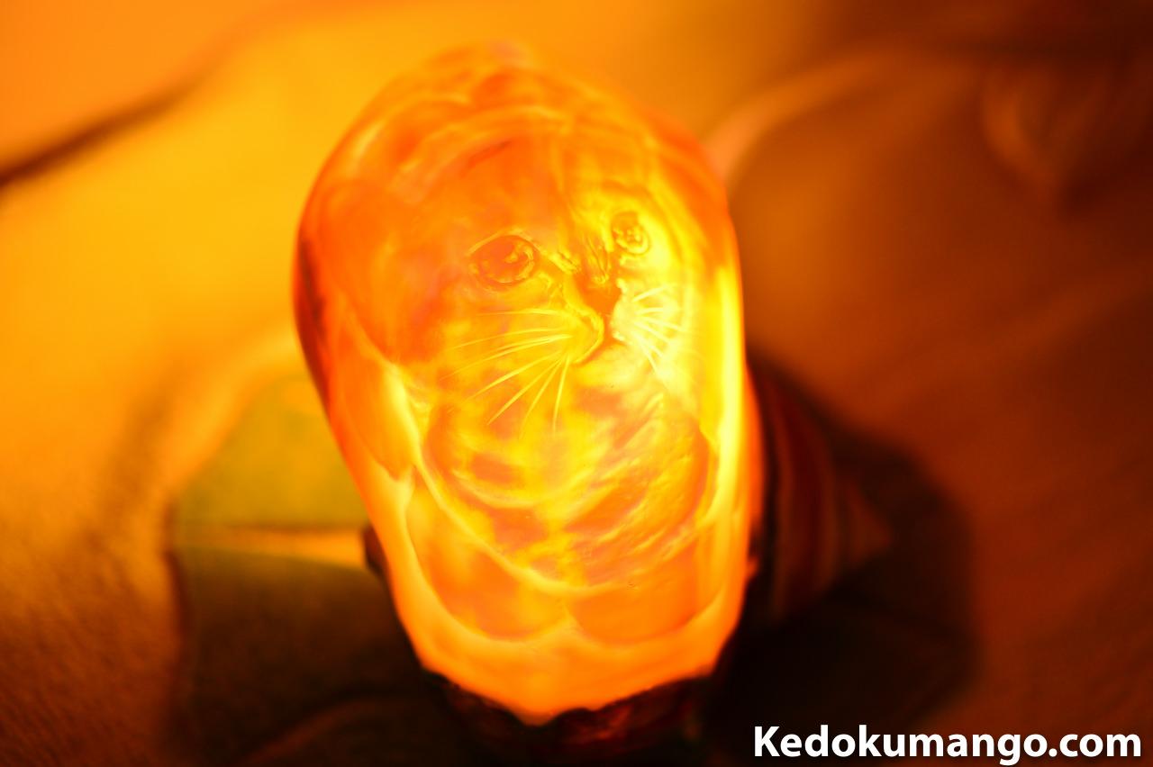 徳之島産「夜光貝のシェルランプ」_「ネコ」の可愛らしさに癒やされます! | 花徳マンゴー