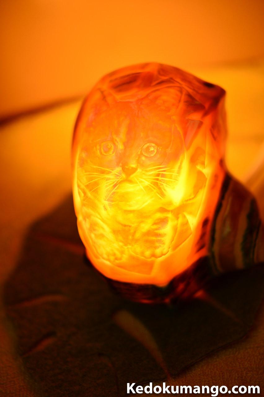夜光貝アート_ネコのシェルランプ-1
