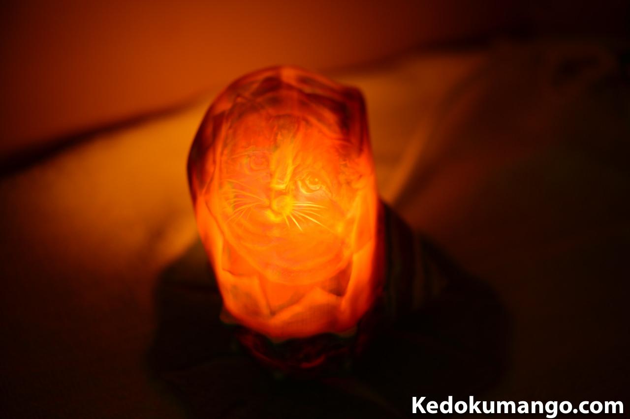夜光貝アート_ネコのシェルランプ-2