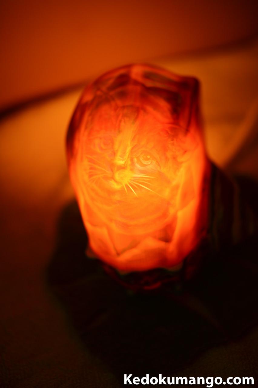 夜光貝アート_ネコのシェルランプ-3