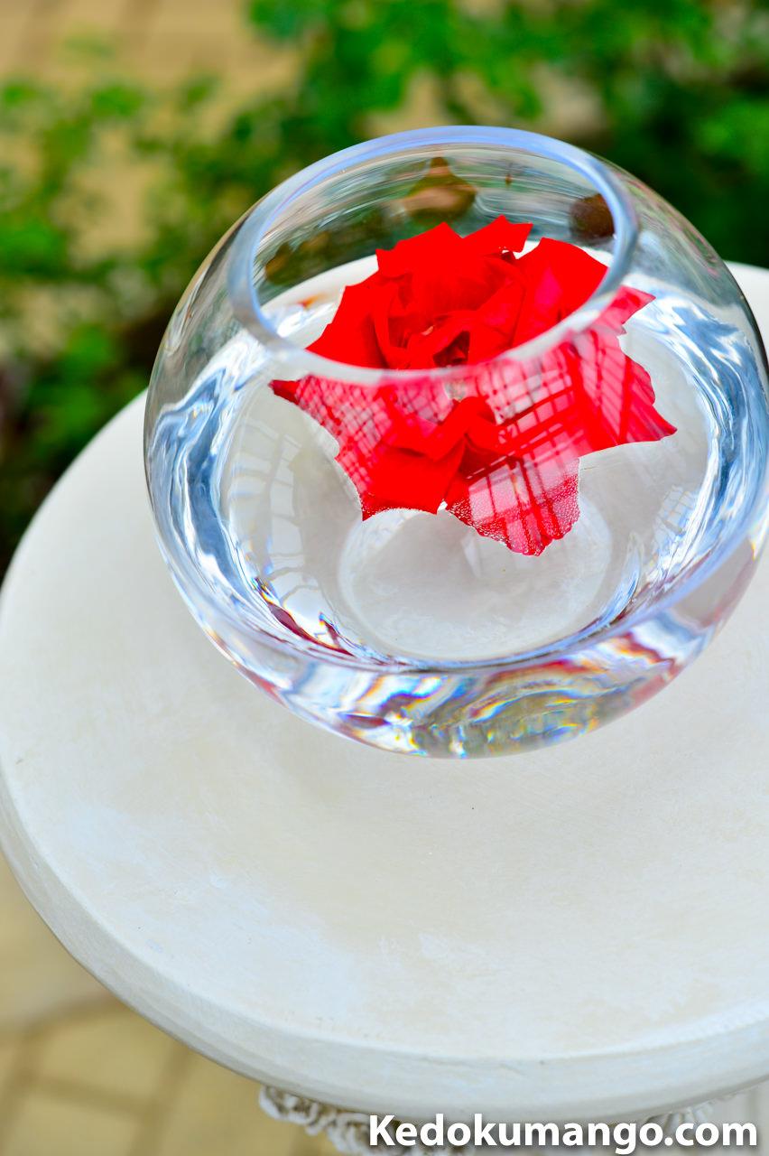 金魚鉢に浮かべられたバラ-1