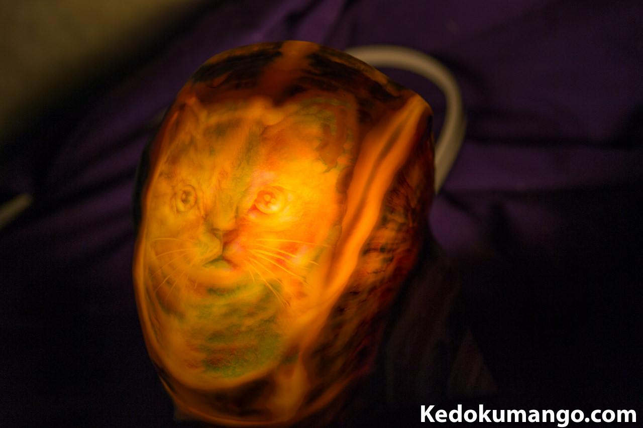夜光貝アート_ぼかしの技術を取り入れた「ネコ」のランプ