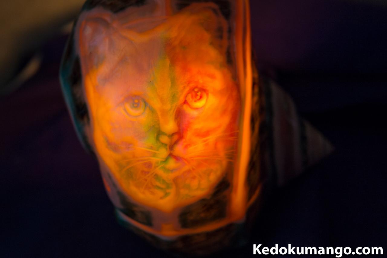 夜光貝アート_上目づかいの知的なネコ