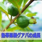 20160606-R0000112_ai