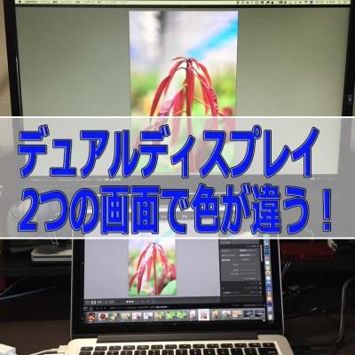 20160616-IMG_1860-2_ai