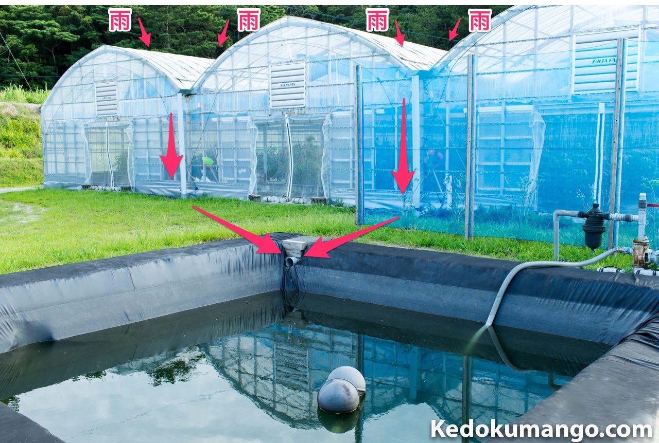 農園の雨水の流れ