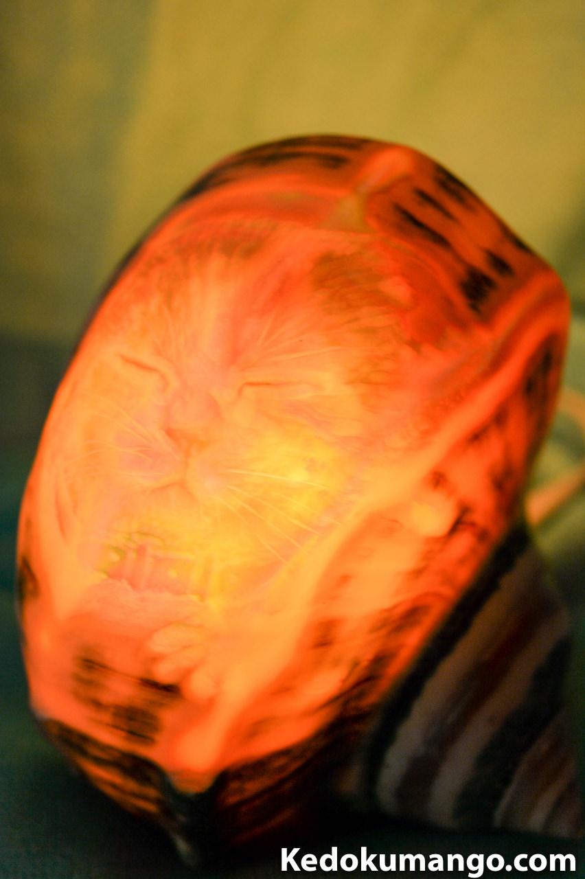 猫(ネコ)が描かれた夜光貝のシェルランプ-2