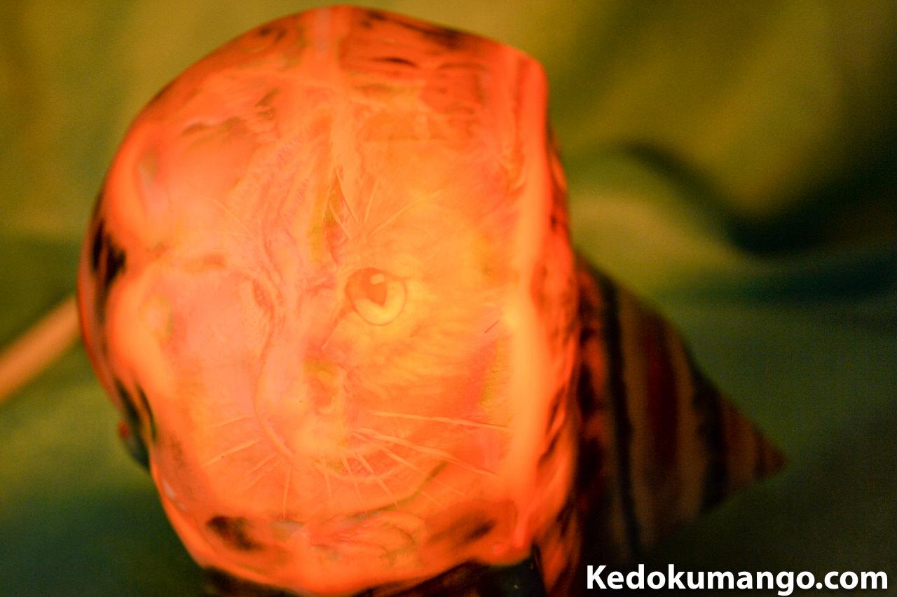 猫(ネコ)が描かれた夜光貝のランプシェル-3