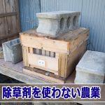 20160629-R0000455_ai