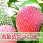 20150817DSC_9255_ai.jpg