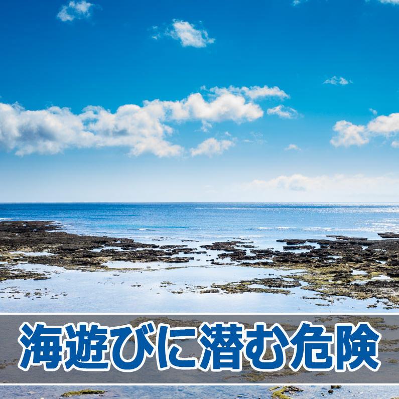 20160618-R0000233_ai