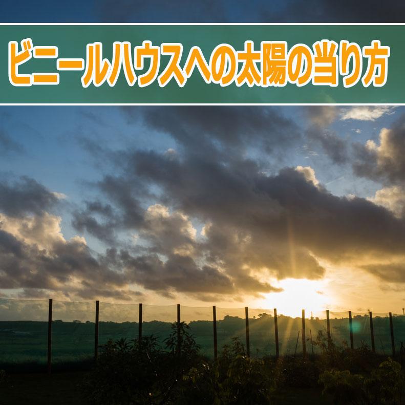 20160706-R0000575_ai