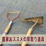 20160709-IMG_1917_ai