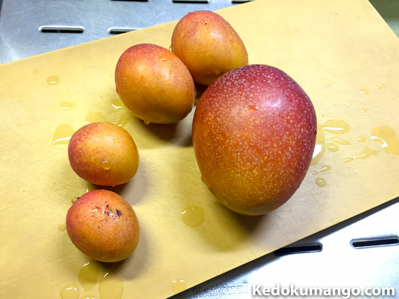 糖度チェックに用いるマンゴー