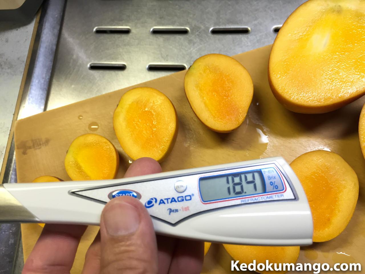 ミニマンゴーの糖度-1