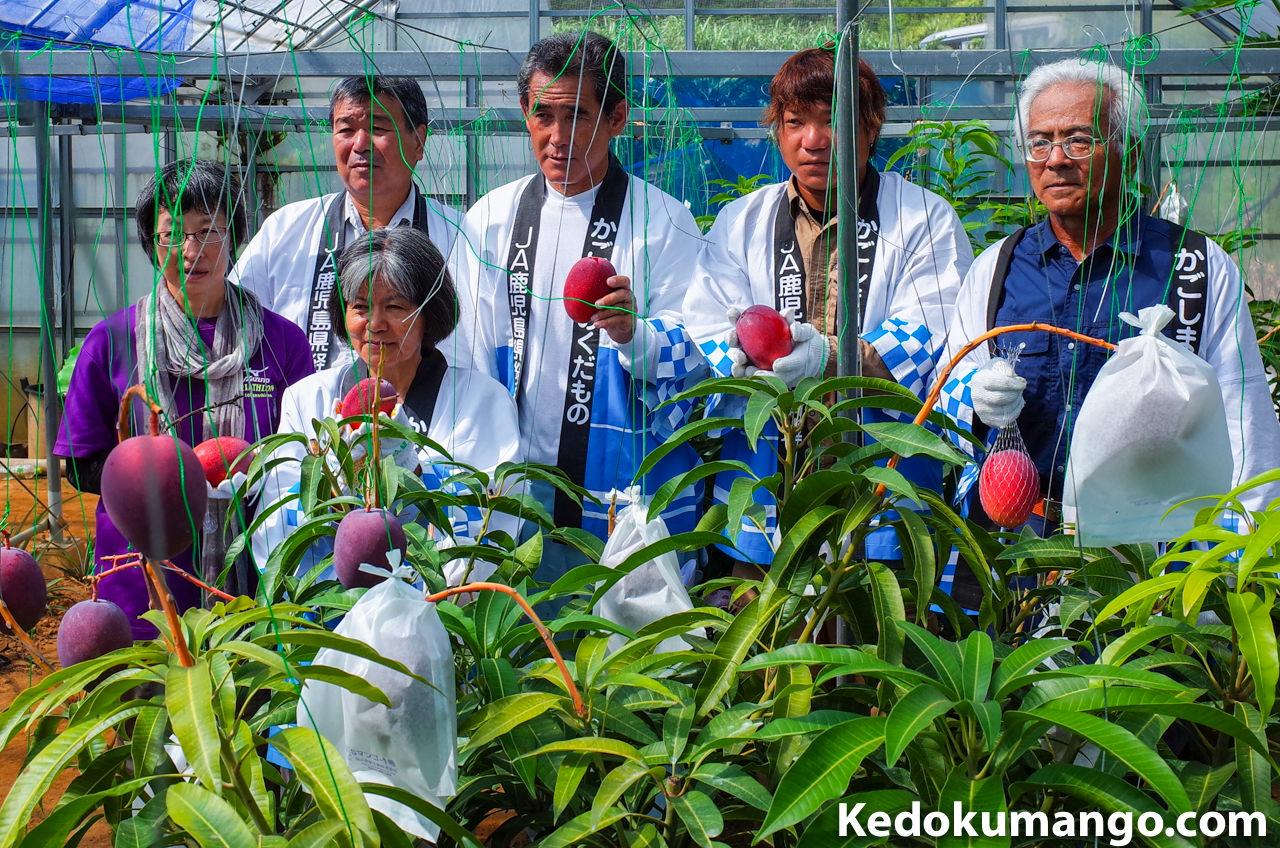 マンゴー収穫祭の記念撮影の様子