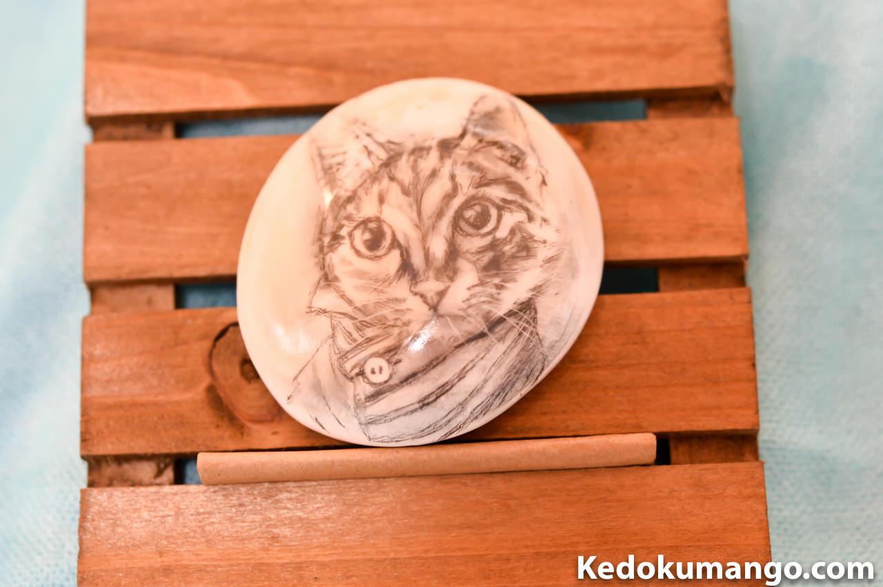 夜光貝のふたに描かれたネコ