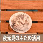 【夜光貝のふた】を使った「ふたネコ」作品を見てみよう!
