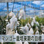 20160724-DSC_4945_ai