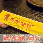 【徳之島の居酒屋】地元の魚が美味い「あかひげ」に行ってみた!